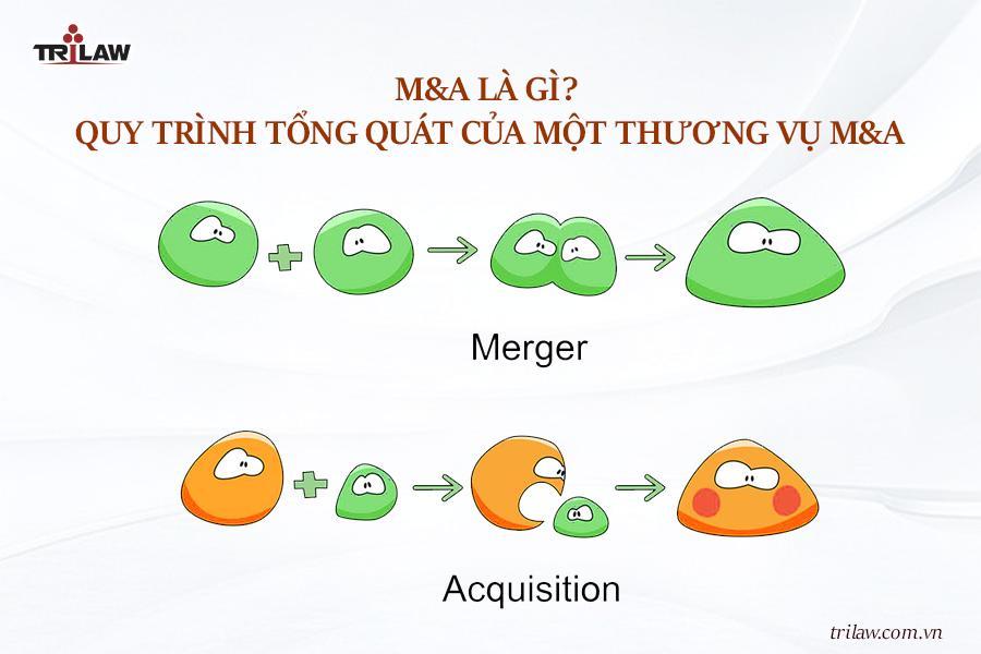 M&A là gì? Quy trình tổng quát của một thương vụ M&A